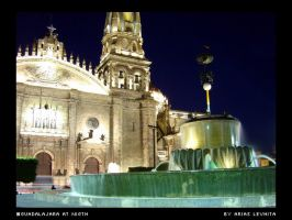 Guadalajara at night by levhita