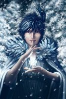 Winter Prince by ArtistsForCharity