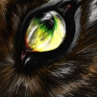 WEREWOLF EYE by HeCartninja