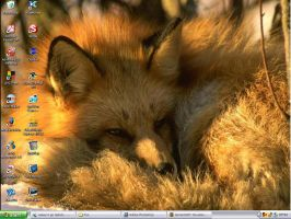 Sleepy fox by RickyDutton
