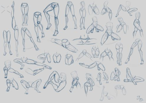 Legs Studies :) by mary3m