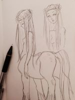 Centaur Lady sketch by MoonLightRose17