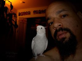 me and my runt ass cockatiel by klbryanphotography