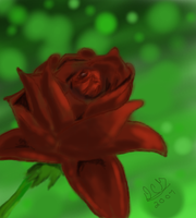 A Rose From the Secret Garden by Ark-of-Menphis