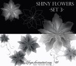 Shiny Flowers set 3 by Lileya