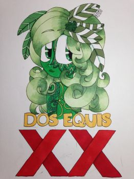 Project: Dos Equis (2 X) by xXRaeRodXx