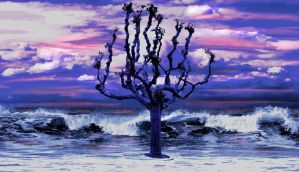 Tree on Coast by Kunstlab