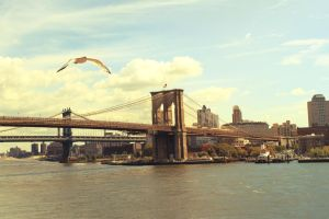 Brooklyn and Manhattan Bridges by JohnnyNiffer