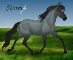 Storm by Starhorse