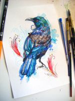 Tui by FinchFight