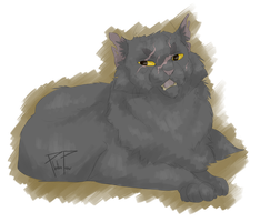 Warrior Cats Calender 5. The old wise grump Cat by PlatinPaw