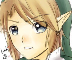Link Vitefouille by linkinounet62