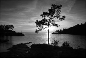 Valaam Islands...  _83 by my-shots