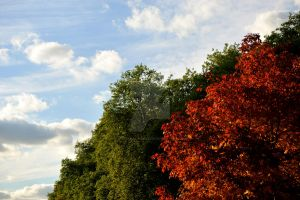 Red Green and Sky by Anonymous-Reverie