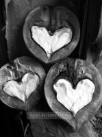 white hearts by Tegori