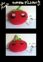 the deformed tomato pillow! by Bubachan333