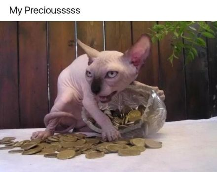 My Precious by TheFunnyAmerican