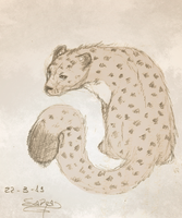 Snow leopard sketch by Sara-A2