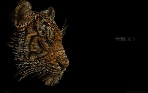 Tiger by AiK-art