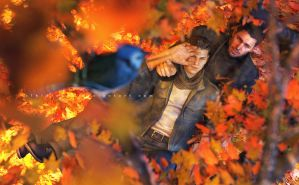 Autumn Break by xTh13teeNx