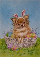 ATC Chichi Easter Bunny by waughtercolors