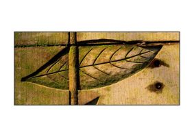Wooden Leaf by yellownoise