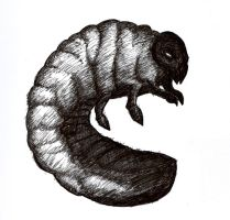 My Pet Maggot by ParasiticCurse