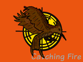 Catching Fire by Smilkman