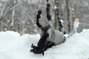 Snow Day! by KLK-Photography