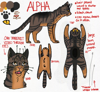 Alpha the Cat by Psycho-Rawr