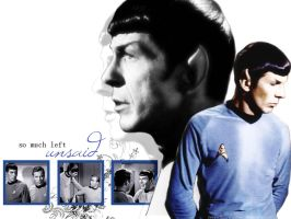 Spirk Wallpaper - Unsaid by TreeofKnowledge