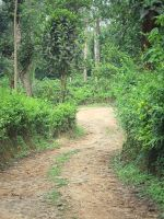 The long and winding road by artbhatta