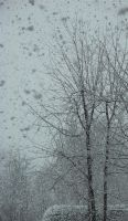 Out of my windows under Snow by greendruid
