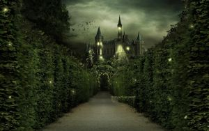 Enchanted Wallpaper by TitusBoy25