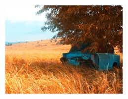 The Autumn of Life by creeks