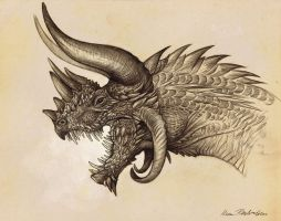 Rhinoceros Dragon by KatePfeilschiefter