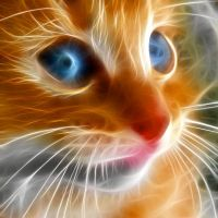 another fractal cat by debby-saurus
