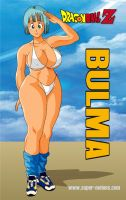 Bulma in bikini by Bigfish2