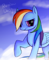 In The Clouds by TheDogzLife