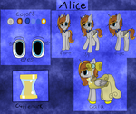Alice Reference Sheet by PrincessReilin