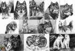 .:PW:..:ACEO Graphite Wolves:. by I-WhiteFire-I