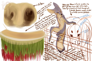 RoD: Alluvix Concept Sketches III by PaintedCricket