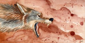 Coyote by hecatehell