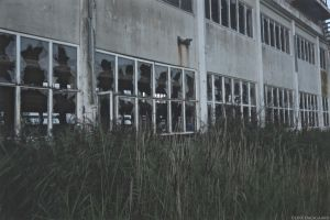 Abandoned factory by wowireallydontcare