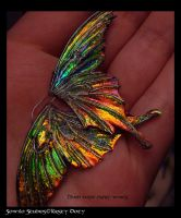 Unseelie fae wing by S0WIL0