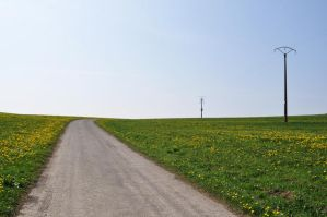 Yellow dots in the field by GordonBeer