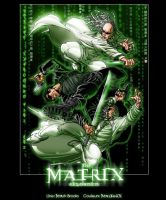 The Matrix Reloaded by MastaHicks