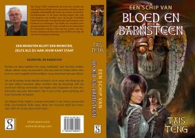 Cover for EEN SCHIP VAN BLOED EN BARNSTEEN by taisteng