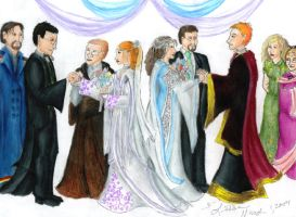 HP double Wedding by Nebulan