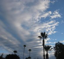 Christmas Clouds 122514 01 by acurmudgeon